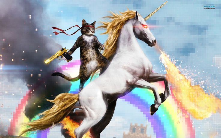 unicorn_cat